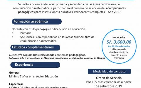 CONVOCATORIA DE CONTRATACIÓN DE ACOMPAÑANTES PEDAGÓGICOS 2019